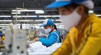 Doanh nghiệp Việttrong cuộc chiến duy trì tăng trưởng: Những giải pháp cấp bách