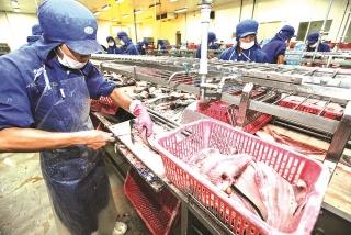 Xuất khẩu thuỷ sản: Kỳ vọng vào EVFTA