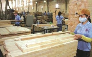 Tăng hiệu quả thực thi pháp luật về gỗ