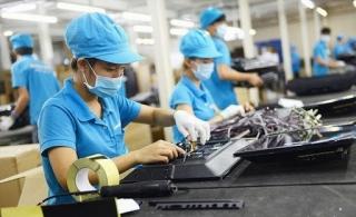 Xâm nhập sâu vào chuỗi giá trị toàn cầu trong xuất khẩu