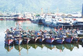 Những cú hích cần thiết trong phát triển Đà Nẵng