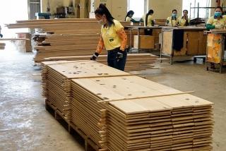 Khắc phục rủi ro gỗ nhập khẩu