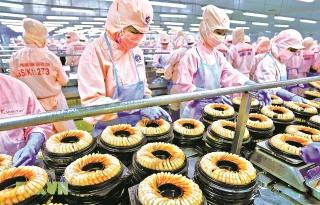 Cân đối giữa hỗ trợ tăng trưởng kinh tế và ổn định vĩ mô