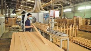 Doanh nghiệp chế biến xuất khẩu gỗ: Hướng tới các sản phẩm cao cấp