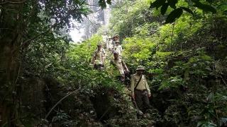 Phát triển ngành lâm nghiệp hài hòa giữa bảo tồn và phát triển