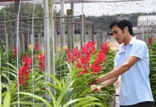 Đến năm 2020 sẽ có 10 khu nông nghiệp ứng dụng công nghệ cao