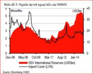 HSBC: Không nên vay từ quỹ dự trữ ngoại hối