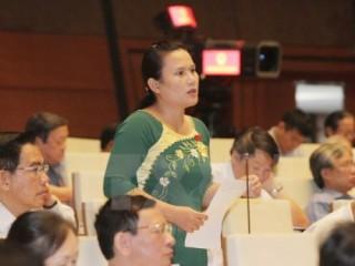 Đại biểu Quốc hội: Đề nghị thành lập Bộ Kinh tế biển