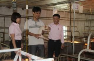 Nữ giám đốc năng động của vùng quê Kim Bảng