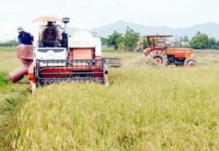 Phê duyệt Đề án xây dựng nông thôn mới trong quá trình đô thị hóa