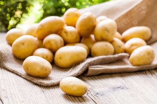 Bỉ tìm đường xuất khẩu khoai tây vào Việt Nam