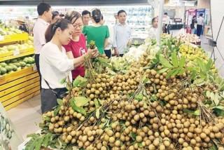 Hợp tác tiêu thụ nông sản an toàn