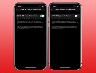 iOS 13.5 tích hợp công cụ truy vết