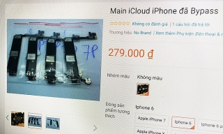 Bảng mạch iPhone bán công khai