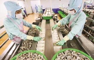 Sản xuất hàng thiết yếu bật dậy sau dịch
