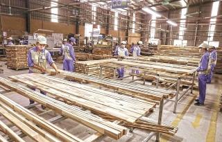 Lao động ngành gỗ: Cần thêm hỗ trợ để phát triển bền vững