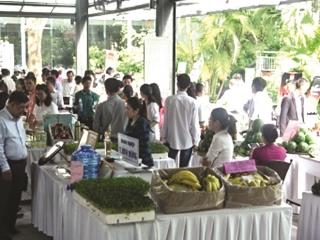 TP. Hồ Chí Minh tăng kích cầu tiêu dùng