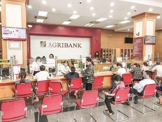 Agribank chi nhánh Vĩnh Phúc II: Hỗ trợ khách hàng vượt qua đại dịch