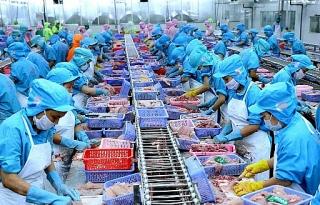 Ngành thủy sản Việt Nam: Cơ hội khôi phục sản xuất, kinh doanh