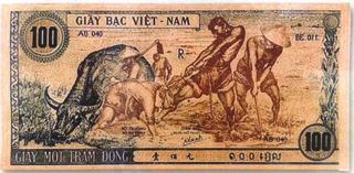 """Đi tìm tác giả vẽ """"con trâu xanh"""" trên tiền Việt Nam Dân chủ cộng hòa"""