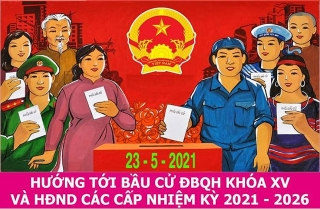 Tổ chức bầu cử phải phù hợp với yêu cầu phòng, chống dịch bệnh Covid-19