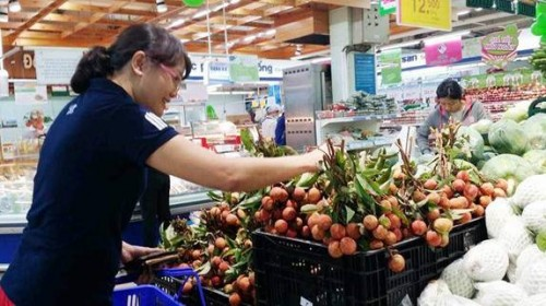 Saigon Co.op tiêu thụ 500 tấn vải tươi cho nông dân