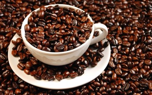 Bổ sung cà phê Việt chất lượng cao vào Danh mục sản phẩm quốc gia