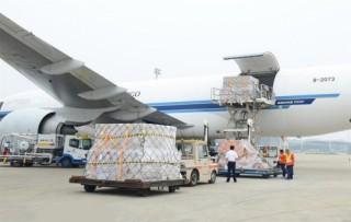 """Cục Hàng không bác bỏ thông tin """"trả lại hồ sơ"""" Bamboo Airways"""