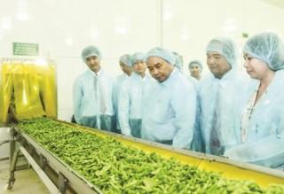 Phát triển nông nghiệp: Chính sách nhiều, hiệu quả ít