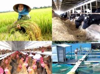 Các biện pháp hỗ trợ TCTD cho vay phát triển nông nghiệp, nông thôn