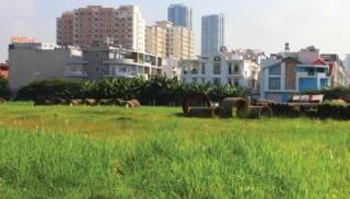 TP.HCM: Cho chuyển đổi mục đích sử dụng đất chưa có quyết định thu hồi