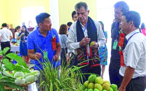 Đưa nông sản Việt ra thế giới