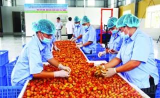 Sự thất thế của trái cây Việt