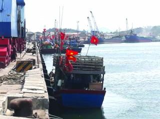 Tàu cá chiếm cảng... tàu hàng!
