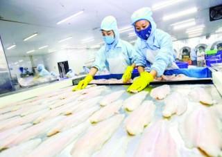 Để ngành thủy sản phát triển bền vững