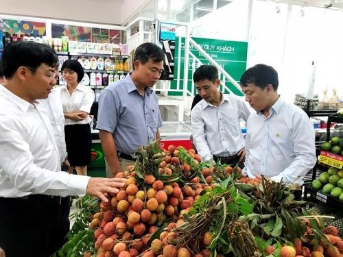 Tăng cường xuất khẩu vải thiều sang thị trường Trung Quốc
