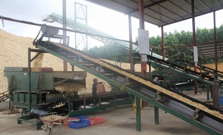 Đa dạng hóa thị trường xuất khẩu dăm gỗ