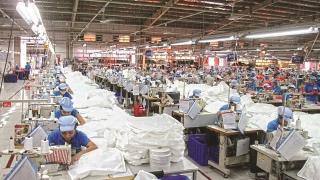 Cần tập trung vực dậy sản xuất