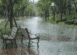 Những ngày mưa