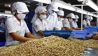Nông sản, thực phẩm Việt Nam: Cơ hội thâm nhập thị trường Ba Lan