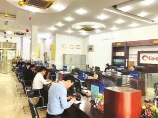 """Ngân hàng Hợp tác xã Chi nhánh Phú Thọ: Hành trình thực thi sứ mệnh """"ngân hàng"""" của các QTDND"""