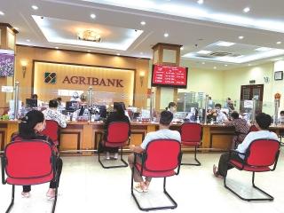Agribank Bắc Thái Bình: Mở rộng quy mô, nâng cao chất lượng hoạt động