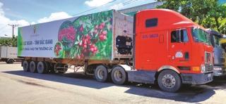 Thông đường vận chuyển nông sản