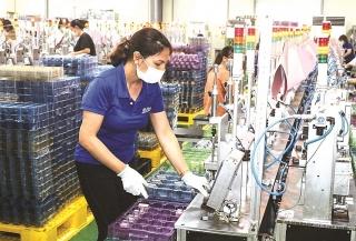 Thị trường lao động mùa dịch: Khó chồng thêm khó