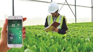 Đẩy mạnh nghiên cứu ứng dụng khoa học trong nông nghiệp