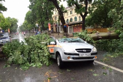 Hà Nội ngổn ngang sau cơn bão số 1