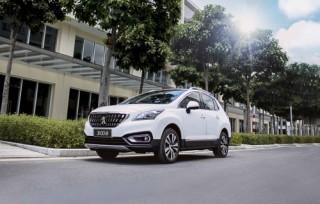 Thaco giới thiệu mẫu xe Peugeot 3008 mới