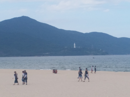 Tắm biển Đà Nẵng bị mẩn ngứa có thể do sứa