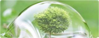 Đánh giá tác động môi trường kéo lùi tốc độ giải ngân