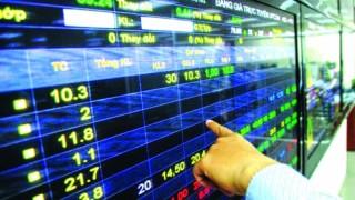 Thị trường rung lắc, chọn cổ phiếu nào?